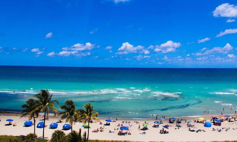 What do I need to do to live in Miami?
